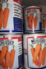 فروش ویژه هویج