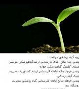 گروه گیاه پزشکی جوانه