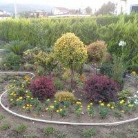 کلیه کار های باغبانی و فضای سبز در نوشهر مازندران