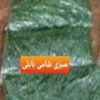 فروش انواع سبزیجات آماده و ترشی