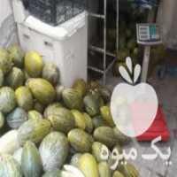 فروش خربزه محولاتی اصل در مشهد