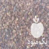 فروش انجیر سیاه خشک امسال در شیراز