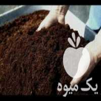 فروش خاک و برگ گلدان در محمودآباد