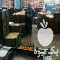 خرید محصولات کشاورزان محترم در بوشهر