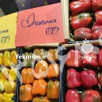 خرید و فروش فلفل دلمه ای در اصفهان