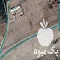 فروش گاوداری و باغ انگور و درختان میوه در قزوین