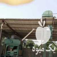 فروش بوجاری حبوبات وغلات در کرمانشاه