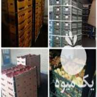 فروش انوا_نبشی_پلاستیکی_بسته بندی در ارومیه