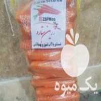 فروش هویج درجه یک و شکسته برای آبگیری در بناب