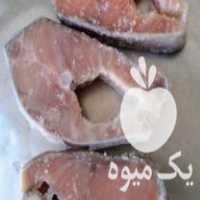 فروش انواع ماهی های سالمون و قزل آلا   یخ زده فله ای در نظرآباد