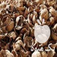 خریدار پوست گردو در مریوان
