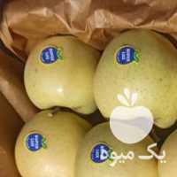 خرید سیب درختی روزانه در ارومیه