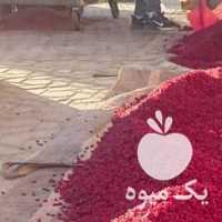 فروش عمده زرشک قاینات کیفیت در تهران