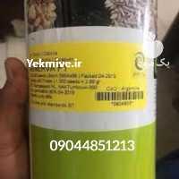 فروش بذر پیاز زودرس مینروا در بوشهر