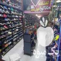 فروش کفش تاناکورا در کرمانشاه