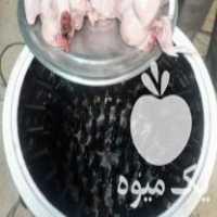 فروش دستگاه پرکن مرغ حرفه ای کیافارم در سردشت