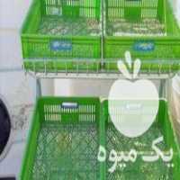 فروش استند میوه در تهران