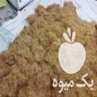 فروش ریشه زعفران 610 در مشهد