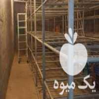 فروش تجهیزات سالن قارچ در اصفهان