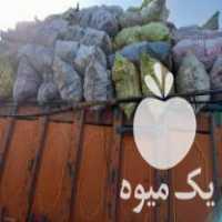خرید خاکه زغال چوب در اصفهان در گروه خرید فروش عمده چوب- زغال چوب گردو تبریزی خام در یکمیوه