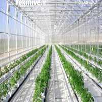 فروش ساخت گلخانه در تهران