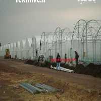 فروش ساخت گلخانه تونلی در تهران