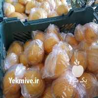 فروش میوه و تره بار میوه ها در تهران
