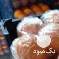 فروش کیوی و پرتقال صادراتی در تنکابن
