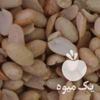 فروش مغز بادام زمینی بادام تلخ تخمه در تهران