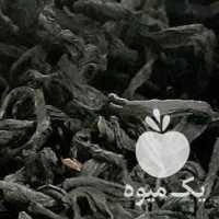پخش و فروش انواع چای بهاره 1400 لاهیجان در گیلان