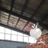 فروش بادام زمینی محلی استانه اشرفیه در آستانه اشرفیه