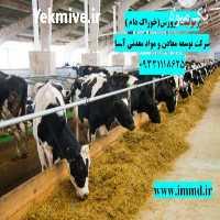 فروش زئولیت در خوراک گاو و گوسفند در تهران