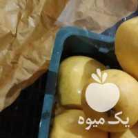 فروش سیب در ارومیه