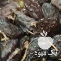 فروش کشمش بی دانه یک تن کیلویی 15 هزارتومان در قزوین