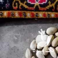 فروش پسته رو آبی احمداقایی در رفسنجان