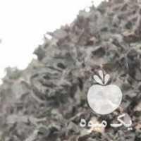 فروش چای محلی بهاره 1400 کومله لنگرود در رشت