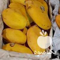 فروش انبه آناناس گلابی انگور یاقوتی در تهران