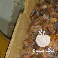 فروش خرما خاصه آب پخش در بوشهر