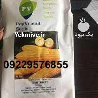 فروش بذر ذرت سمیرا در تهران