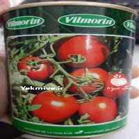 بذر گوجه فرنکی ویلمورین پرفروش در خوزستان
